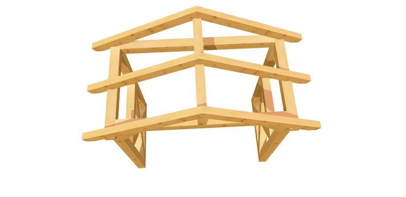 Holz Vordach selber bauen 2m x 2,24m