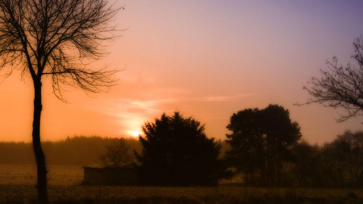 Nordholz Süd: Sonnenaufgang