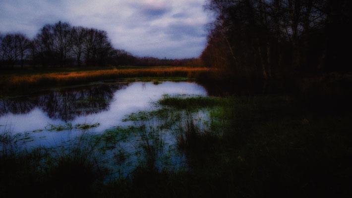 Sievern: Dorumer Moor Nähe Pipinsburg