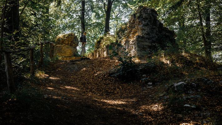 Burgruine Sachsenstein bei Walkenried / Harz