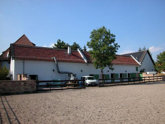 Ehem. Mühle Worms Heppenheim: -Hauschwammsanierung / -Bekämpfender Holzschutz im Heißluftverfahren