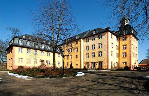 Schloß Gedern: -Bekämpfender Holzschutz im Mikrowellenverfahren