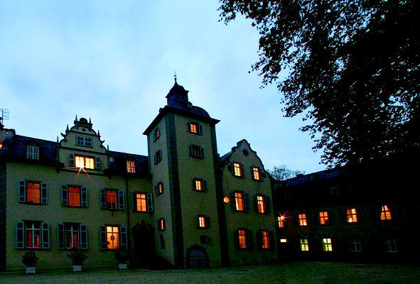 Schloss Nassau: -Bekämpfender Holzschutz im Mikrowellenverfahren