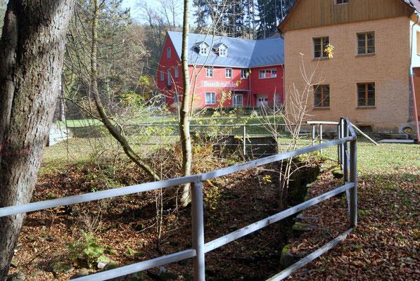 An der Wesenitz bei Rennersdorf 2013