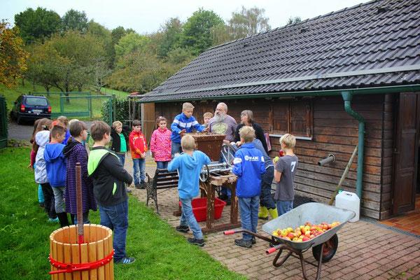 Apfelsaftpressen mit dem Obst- und Gartenbauverein Selbach