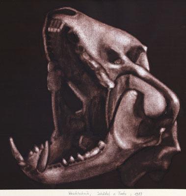 Fuchsschädel, rotbraune Pigmente mit Wasser aufgetragen auf Papier / Auswaschtechnik / 1983