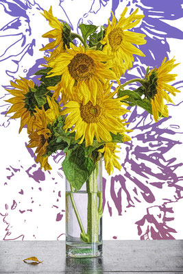 Sonnenblume violett / UNIKAT / 2019 / 22.000 x 15.000 pix