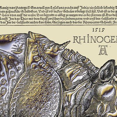 Bildausschnitt: RHINOCERUS Silber k