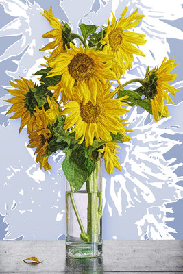 Sonnenblume hellblau / UNIKAT / 2019 / 22.000 x 15.000 pix