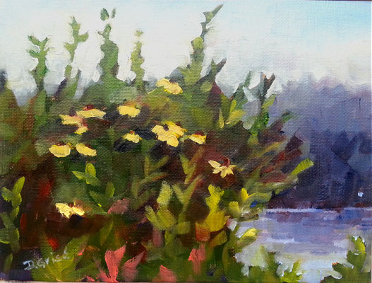 By The Lake  •-  6x8 oil - unframed   - 85.