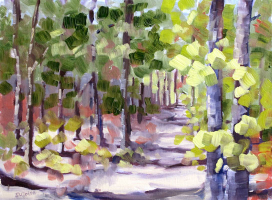 Forrest Walk 3   9x12              Demo: working with greens. distant & forground             75