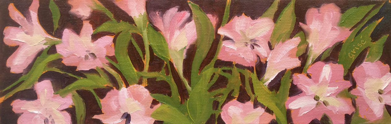 Lilies - 9x3 oil on canvas board - unframed   40. CAD + shipping