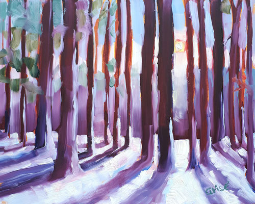 Winter Shadows   10x8  oil on canvas board - unframed             125.+ shipping