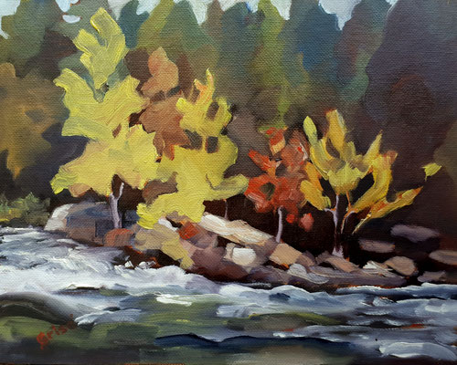 Oxtongue River September          10x8  oil - unframed            Currently showing at Orillia Museum of Art & History