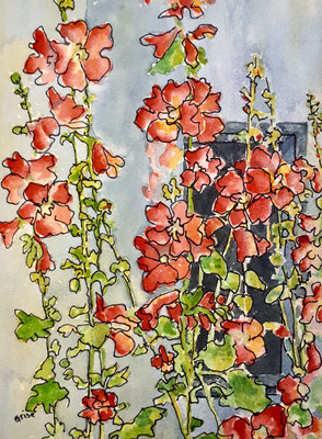 Hollyhock Garden  5x7x .75 watercolour & Ink - Varnished & mounted on birch box panel   - $95. CA  View at Colbourne Street Gallery, Fenelon Falls