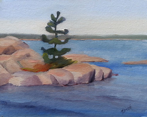 Island Tree - 10x8 oil on canvas - 10x8 oil             SOLD