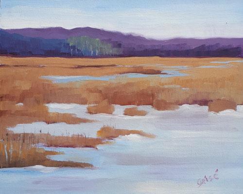 Tiny Marsh - plein air  10x8  oil on canvas board - unframed             125. CA + shipping
