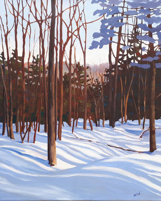 Sunnidale Park - Winter    24x30 oil on gallery canvas  1100.00 CA    To purchase or view, please contact me.