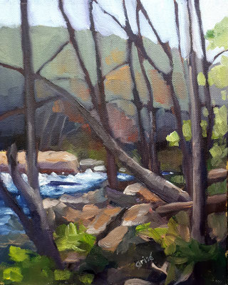 Oxtongue River Through The Trees         8x10  oil  SOLD