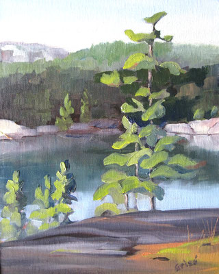 George Lake Rocks - 8x10 oil on canvas - 10x8 oil unframed -   125. + shipping    To purchase or view, please contact me.