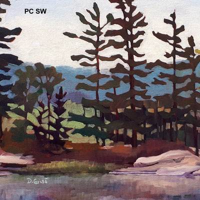Pillow Cover - Still Waters    PC SW