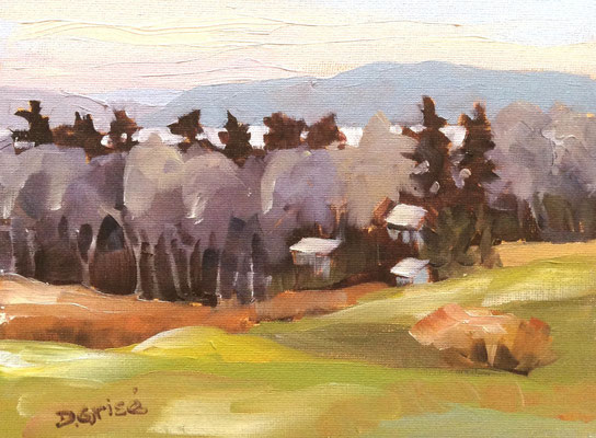 Lake Solitaire - Limberlost Huntsville     -8x6 oil - unframed     -  85.  + shipping    To purchase or view, please contact me.