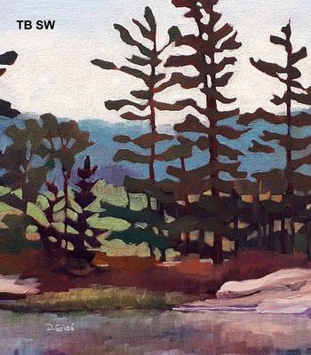 Tote Bag - Still Waters    TB SW