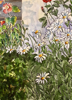 Daisy Garden    5x7x .75 watercolour & Ink - Varnished & mounted on birch box panel   - $95. CA   View at Colbourne Street Gallery, Fenelon Falls