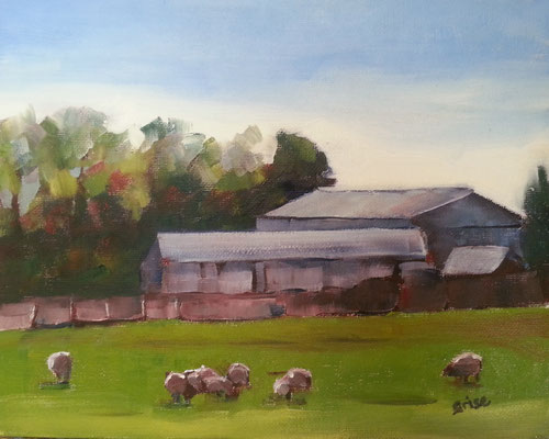 Grazing Sheep - 10x8 oil on canvas - 10x8 oil unframed -   125. + shipping    To purchase or view, please contact me.