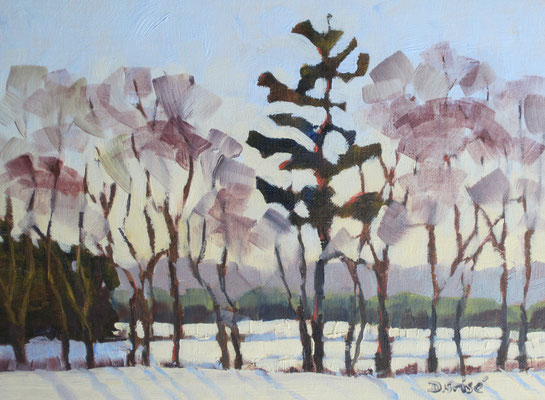 Early Snow 1     10x8 oil             Demo: snow, tree form and using transparent glaze     75