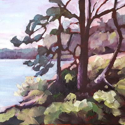 Cranberry Bog 1 (Killarney Provincial Park) - 8x8 oil on canvas board - unframed   110. + shipping
