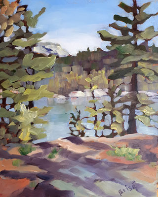 George Lake    8x10  oil on canvas board - unframed             125.+ shipping