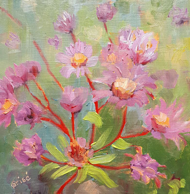 Wild Purple Asters - 6x6 oil on birch box panel -  $125. CA + shipping - Contact me to view or purchase.