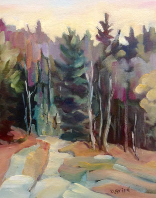 Oxtongue River Bank - Algonquin Park   -    10x8 oil - unframed    -    125.