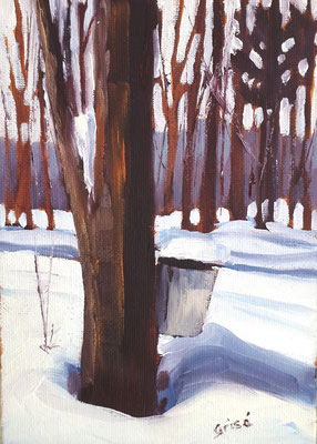 Maple Harvest 2    5x7   oil on board     55. + shipping