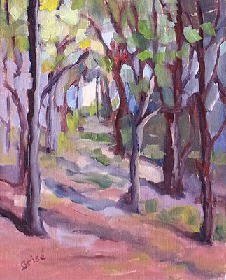 Woods Sancutary - 8x10 oil on canvas - 10x8 oil unframed -   125. + shipping    To purchase or view, please contact me.