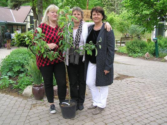 Peergroup Nord auf dem Ellernhof