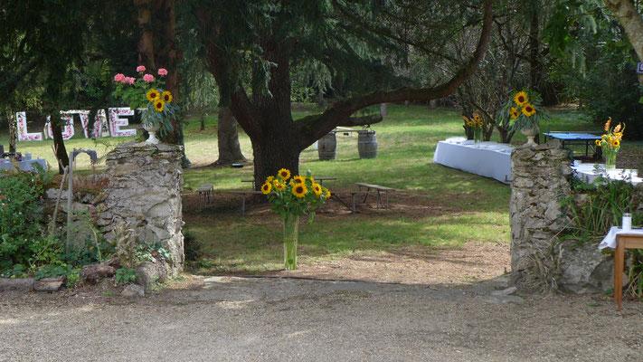 Grand vases de Tournesols 20 - 25 euros
