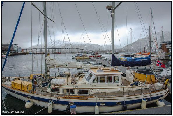 Bodo Hafen