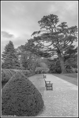 Viktorianischer Garten#Muckross House#Walled Garden Centre#Bourn Vincent Memorial Park