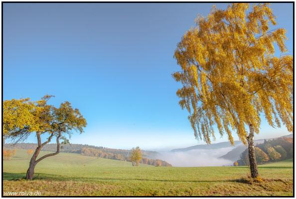 Rursee#Herbst#Eifel