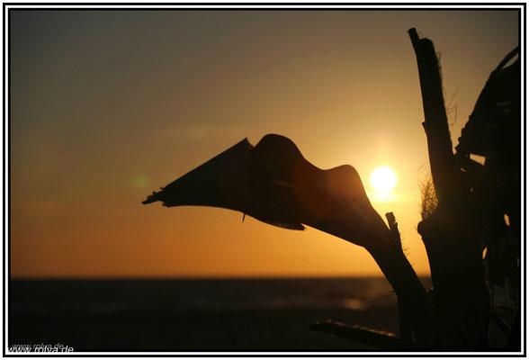 Sonnenuntergang#Spiekeroog