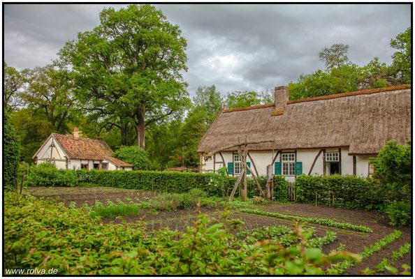Landidylle#Bauernhäuser#Reeddächer