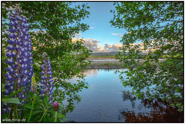 Newtonmore#Wild cat trail#Spey#Schottland