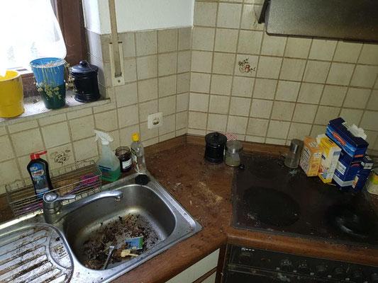 Vor der Wohnungs-Küchenreinigung