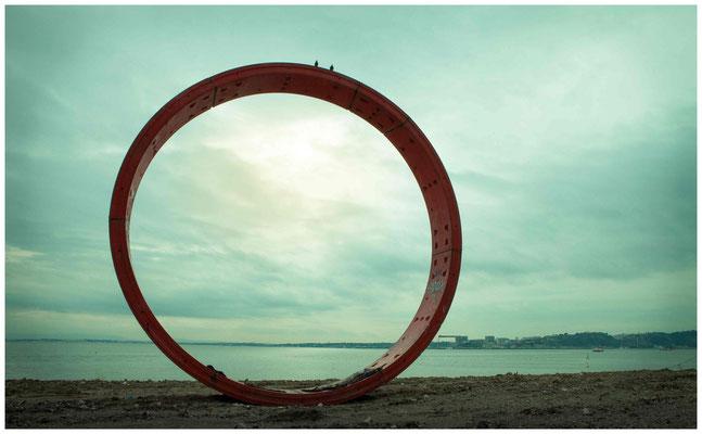 Ring (©Max Knauer)