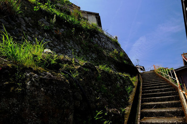 港町独特の急こう配の石段を登って家につきます。