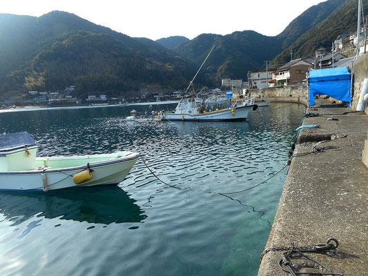二木島湾 釣りができます。