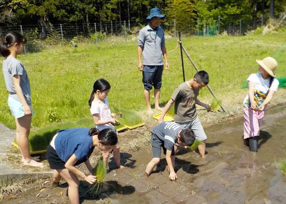 自然豊かな熊野市での子育てを応援いたします。
