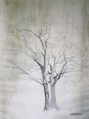 24.04. - Tag des Baumes